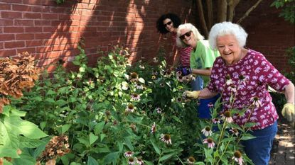 Volunteers, from left, Beverly Fink, Suzie Manger and Patricia Owens, weed and clean up the community garden at the Village Learning Place in Charles Village on Sunday, July 22.