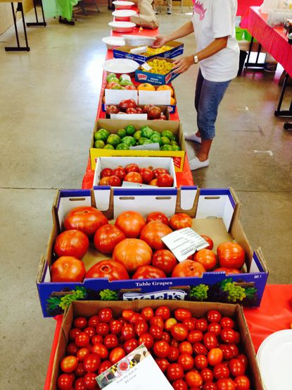 The Carroll County Master Gardeners' Heirloom Tomato Festival, pictured in 2014, will be held on Saturday, Aug. 17, from 8 a.m. to 1 p.m. at the Carroll County Agriculture Center.