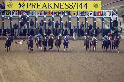 The owners of Pimlico Race Course want to ban the use of the drug Lasix in horse racing.