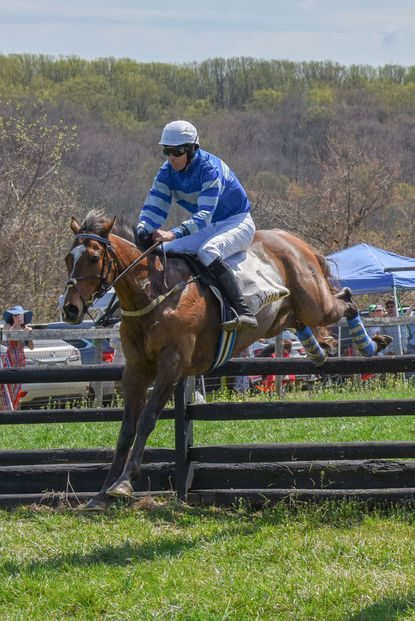 Mystic Strike, ridden by Mark Beecher, trained by Todd McKenna and owned by Upland Partners over the 10th jump in the 109th running of the My Lady's Manor Steeplechase. Mystic Strike would win the day's featured race.