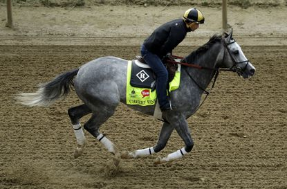The list of newcomers for the Preakness is long in a field of 11. It includes Cherry Wine, who was on the also-eligible list for the Kentucky Derby.