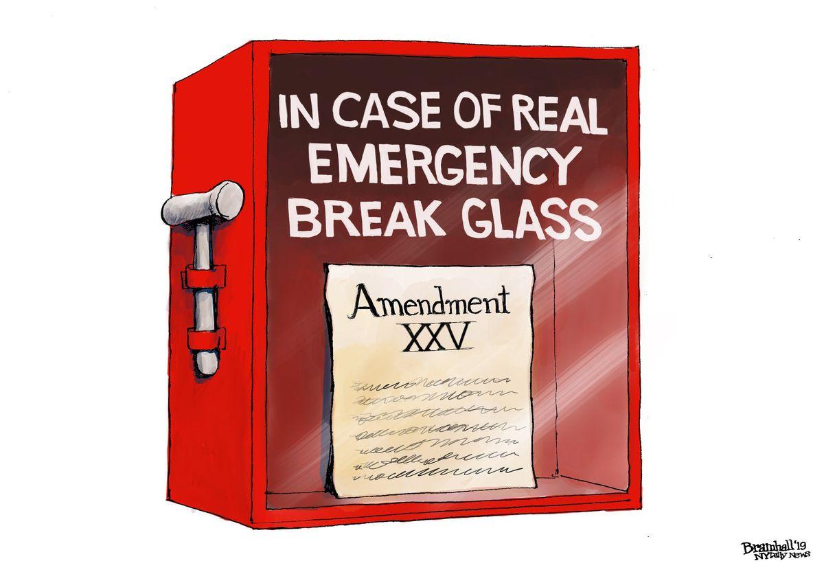 Isn't it time to invoke the 25th Amendment?   READER ...