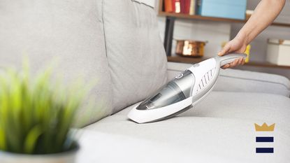Handheld vacuums are great for households with kids and pets since they can quickly clean up the little messes left behind, tiding you over until your next big vacuuming session.