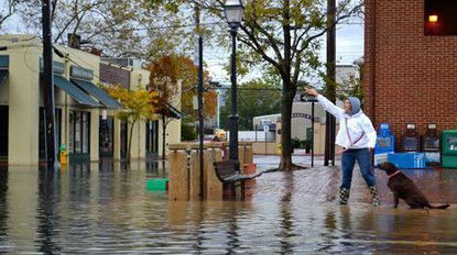 Resident Lauren Sinnott, 27, played with her dog, Becca, on the flooded streets of downtown Annapolis after flooding in September 2016.