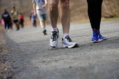 Ma & Pa Heritage Trail, Inc. board members, volunteers and family members walk the trail.