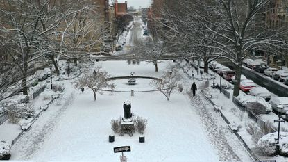 Several inches of snow coated the Barye Lion Statue and the park at West Mount Vernon Place after a Feb. 21 snowstorm.