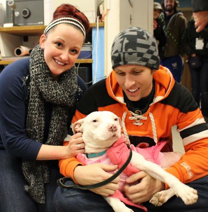 Molly the pit bull and her new owners,Claire Giambi, left, and Kevin McMullen.