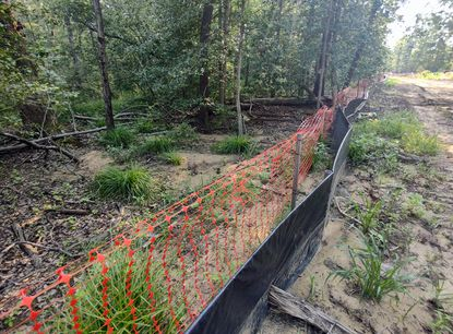 Photo of a construction site at Parkside Preserve, also known as the Reserve at Quiet Waters, that shows sediment pollution in nearby protected wetlands. Annapolis has issued fines totaling $2,000 for environmental violations for the Anne Arundel County-based Reliable Contracting Company.