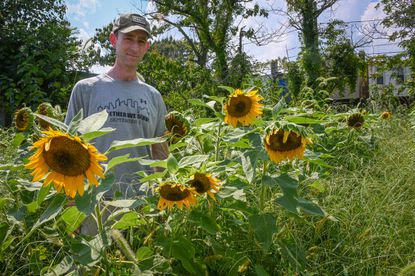Scott Goldman stands in a sunflower field in Baltimore's Broadway East neighborhood that was planted by The 6th Branch, a local group of military veterans that uses their skills to rebuild broken communities.