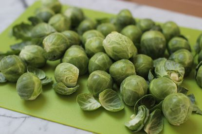 Sources of galactan include legumes (beans, soy, chickpeas, and lentils), cabbage, and Brussel sprouts.
