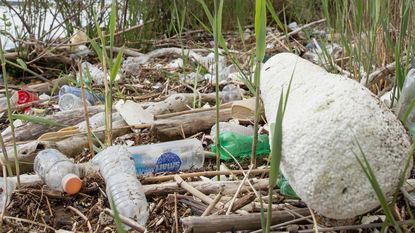 Plastic litter found during Fort McHenry Field Day.