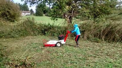 Grandson Matthew jumps in to help with the tall weeds.