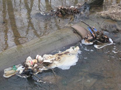 Litter and foam from some unknown source collect by a sewer pipe in Baltimore stream.