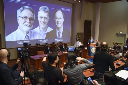 """Thomas Perlmann, far right, Secretary-General of the Nobel Committee announces the 2019 Nobel laureates in Physiology or Medicine during a news conference in Stockholm, Sweden, Monday Oct. 7, 2019. The prize has been awarded to scientists, from left on the screen, Gregg L. Semenza, Peter J. Ratcliffe and William G. Kaelin Jr. for their discoveries of """"how cells sense and adapt to oxygen availability."""""""