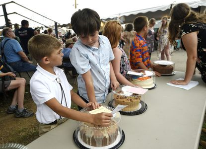 Cade Schaefer, 8, left, and Trenton Horichs, 11, prepare to present their cakes in the cake auction at the Carroll County 4-H & FFA Fair in Westminster Wednesday, July 31, 2019.