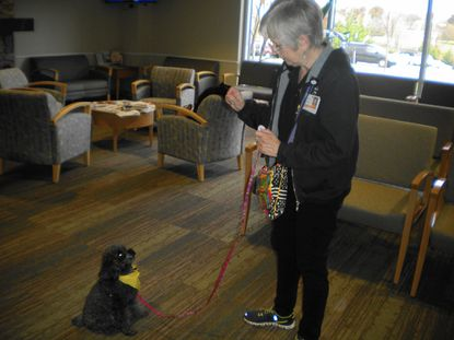 Mary Newport of Westminster, and her dog, Pippa, demonstrate a trick that always brings a smile from patients at the Kahlert Regional Cancer Center.