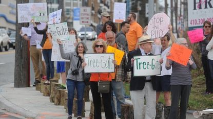Rally planned Monday at 'Towson Gateway' marking anniversary of felled trees
