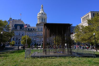 """""""Society's Cage,"""" a new art installation, has been set up on the lawn in front of Baltimore's City Hall."""