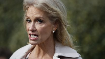 White House senior adviser Kellyanne Conwa says she was grabbed and shaken by a woman at a Mexican restaurant in Bethesda, Maryland, late last year.