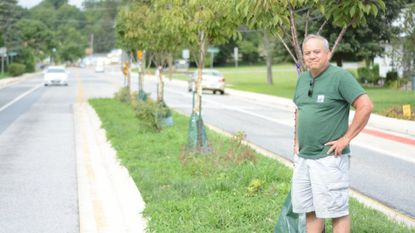 Jim Himel, director of the Catonsville Tree Canopy Project, stands by cherry trees along a half-mile stretch of Edmondson Avenue in 2017.