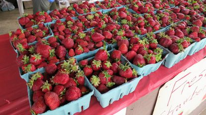 The 29th annual Old-Fashioned Strawberry Festival, a gigantic celebration of all things strawberry, will be held June 15 at the Gamber carnival grounds.
