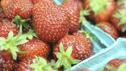 Strawberry Festival on Sunday, June 2 at Melville Chapel United Methodist.
