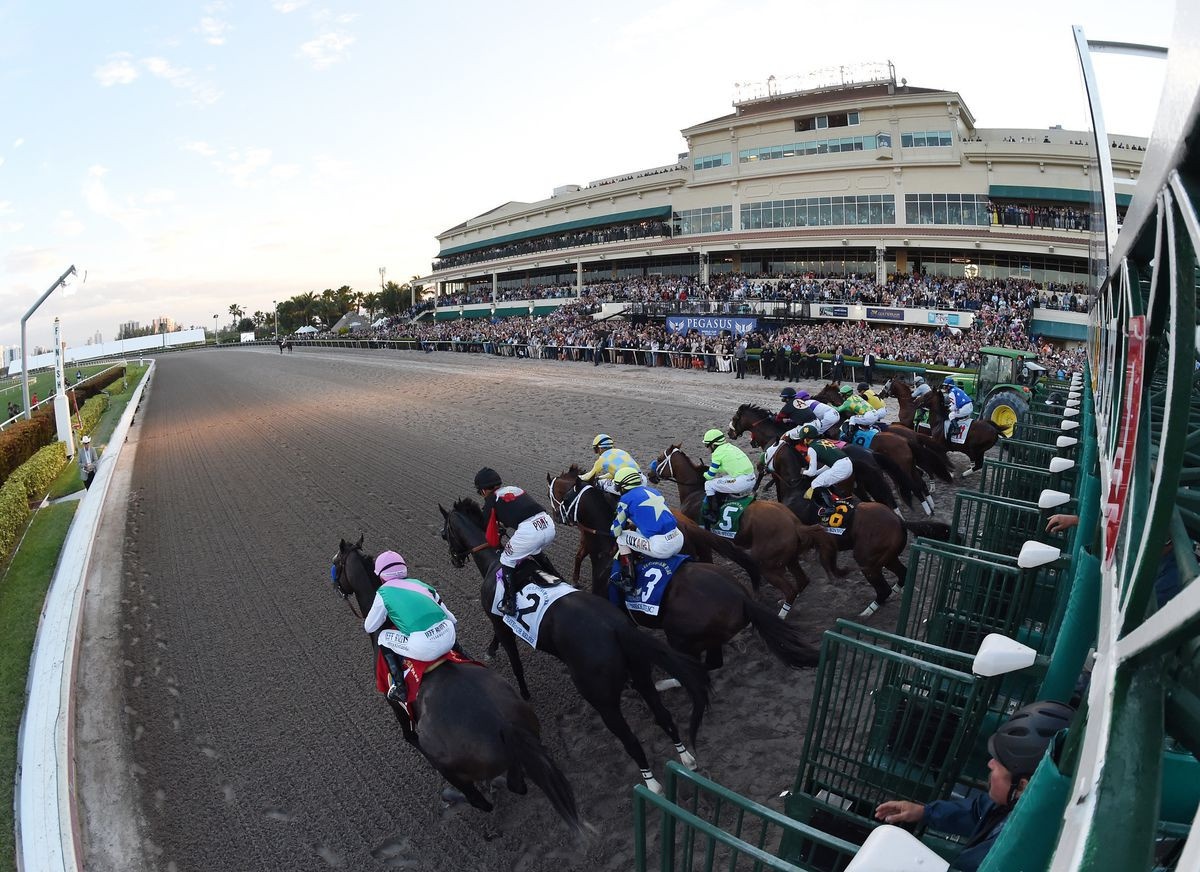 Gulfstream Park In Florida Cancels Live Horse Racing