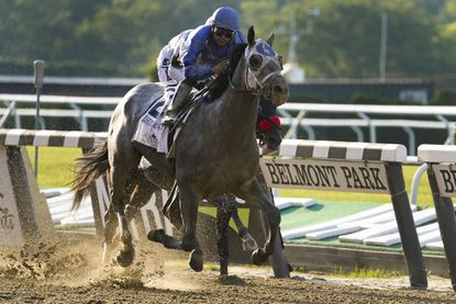 Essential Quality (2), with jockey Luis Saez up, crosses the finish line to win the 153rd running of the Belmont Stakes horse race, Saturday, June 5, 2021, At Belmont Park in Elmont, N.Y. (AP Photo/John Minchillo)