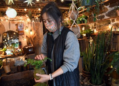 Anna Kim, owner of Gott Efni flower and gift shop in Ellicott City, tends to plants inside her shop on Main Street.