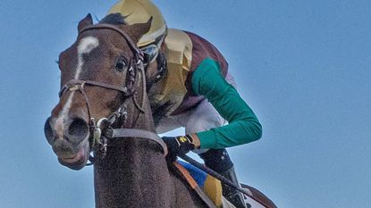 Maryland-based Alwaysmining wins the Tesio Stakes at Laurel Park on April 20.