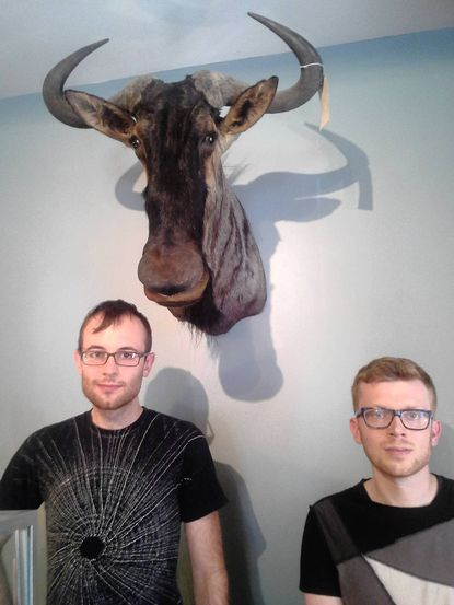 Brian Henry and Greg Hatem stand behind the counter in their new store, Bazaar, in Hampden. On the wall behind them hangs the head of a real African wildebeest, they say, adding that they named it Stanley.