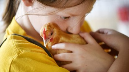 Abby Lawrence, 8, of Eldersburg snuggles with Bananakins, her bantam hen, in the Poultry Barn at the Carroll County 4-H & FFA Fair in Westminster Thursday, August 3, 2017.