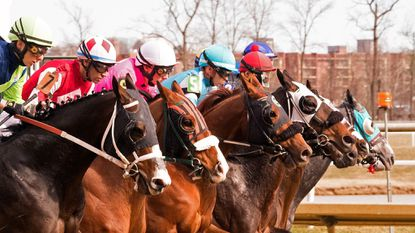 Laurel Park opens spring meet on Friday.