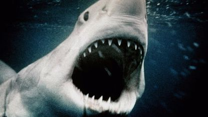 """A scene from the 1975 movie """"Jaws."""""""