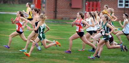 The start of the 2014 IAAM Girls Cross Country championship at Oregon Ridge Park.