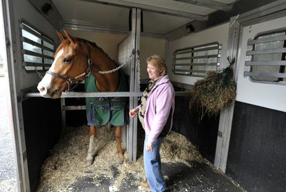 """Nancy Dawn Ashway, owner of Country Comfort Farm in St. Michaels, is pictured with """"Romeo"""" in her horse trailer."""