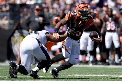 Cincinnati Bengals Running back Giovani Bernard against the Ravens this season.