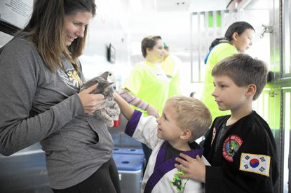 Janice Stencil, left, of Manchester, holds kitten, Vanessa, while her sons Jeremy Stencil, center, 5, and Michael Stencil, right, 6, pet her inside the county humane society's trailer.