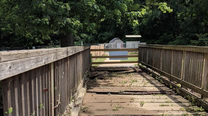 Emergency bridge replacement at Bennett Cerf Park, dog park access to be restored