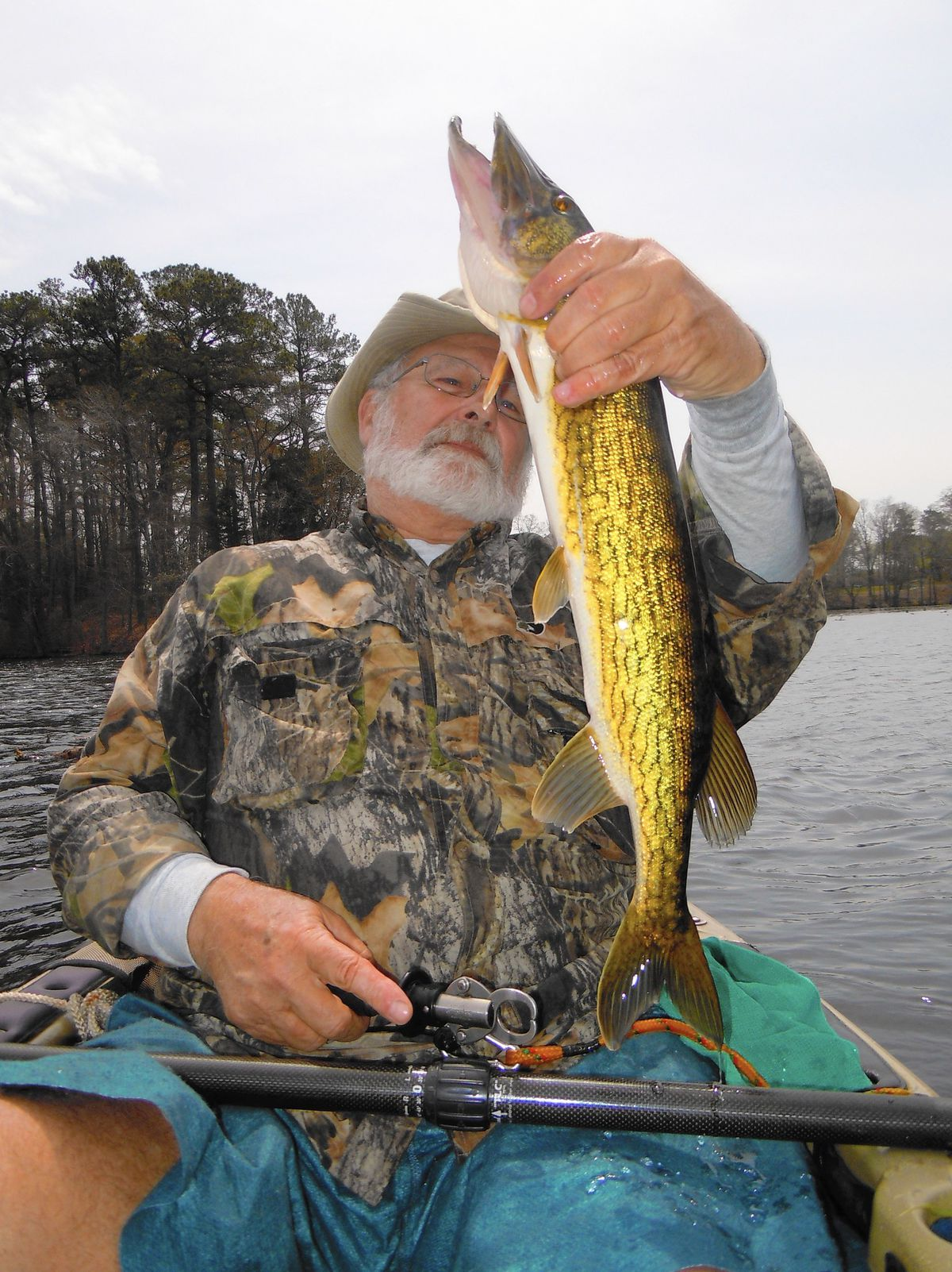 What to know when pickerel fishing - Carroll County Times