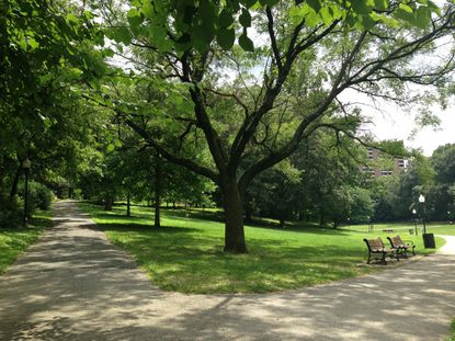 Just across from the Baltimore Museum of Art is a stairwell that leads down into a secluded park. Although it's surrounded by bustling city traffic, the brick walls and tall trees keep the park hidden. Talk about urban picnicking.