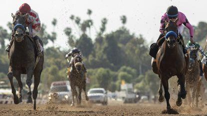 Racing at Santa Anita has been curtailed to Friday through Sunday until at least June.
