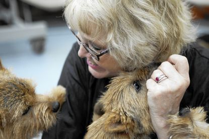 Howard pet grooming business wins zoning change after two-year push