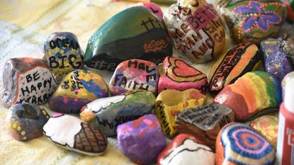 Taneytown Family Promotes Kindness With Painted Rocks Carroll County Times