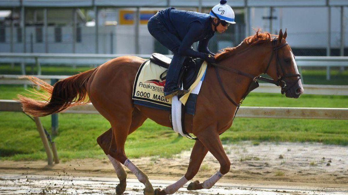 Ahead Of Trainer Chad Brown S Arrival Good Magic Gets Head Start On Prep For Preakness Baltimore Sun