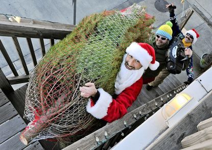 Jason Toraldo, dressed as Santa, climbs up to the roof deck of a Locust Point rowhouse, cargo in hand. He started Pork N' Pine, which delivers Christmas trees and pulled pork sandwiches by bike and van to customers in and around Baltimore.