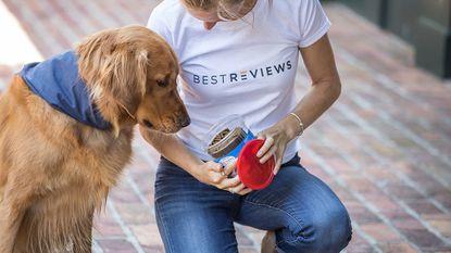 The best dog dental chew