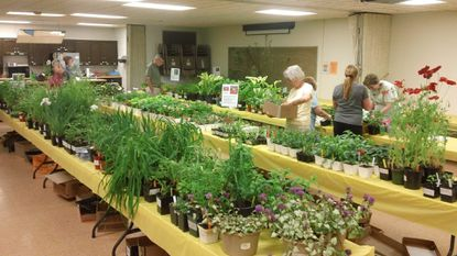 Central Carroll: Master Gardeners planning Plant and Garden Sale despite losing longtime chair