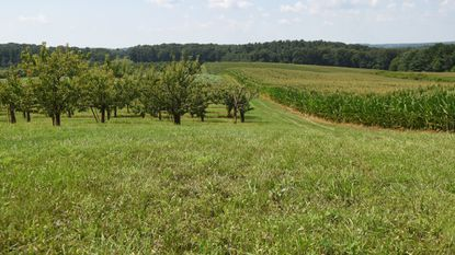 Barron Shaw, whose family has owned Shaw Orchards in White Hall since 1909, is concerned his orchards would be hurt by the Transource Energy's proposed Independence Energy Co.