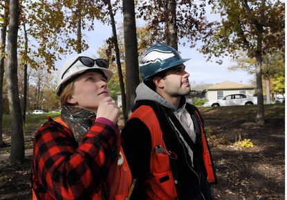 Researchers map Maryland's forest carbon